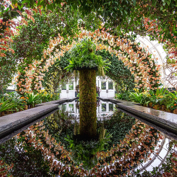 The New York Botanical Garden – Save Over 15%!