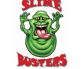 Slime Busters – 10% OFF for BraveHeroes Members
